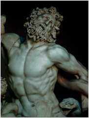 laocon (twoeightnine) Tags: 2002 italy sculpture vatican male film muscles canon nude grey italia emotion ae1 gray strangle vaticano snakes laocoon struggle cittadelvaticano