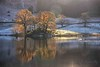 Rydalwater Reflections (Jason Connolly) Tags: rydalwater rydal autumnalcolour autumn fall thelakedistrict thelakedistrictnationalpark thelakes lakedistrict lakelandlandscape cumbria cumbrianlandscape cumbriancountryside nwengland northwestengland northernengland