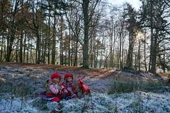 Im  Zauberwald mit den Kindergartenkinder ... (Kindergartenkinder) Tags: dolls himstedt annette kindergartenkinder park herbst sony ilce6000 personen kind annemoni dülmen sanrike