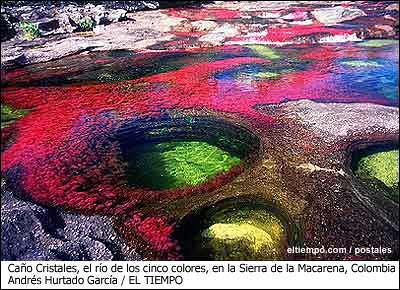Cano_Cristales