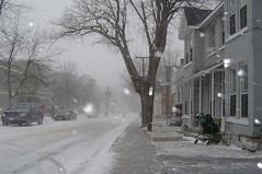 Winter (davekellam) Tags: winter blizzard january 2005 cold