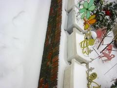 east flatbush (robin dennis) Tags: winter brooklyn garden flamingo unitedstatesofamerica bee fowl blizzard flatbush