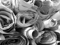 Paper Roses (Dave Ward Photography) Tags: roses blackandwhite bw usa news texture rose ads paper advertising geotagged us newspaper washington interestingness bestof unitedstates unfound best bellingham wa rolls advertisements flickrblog herald whatcom davewardsmaragd washingtoncolony geo:lon=122479276 geo:lat=48747445 pss:opd=1106750606
