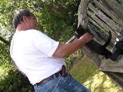 0446-kc black kitten (shimmertje) Tags: new zealand 204