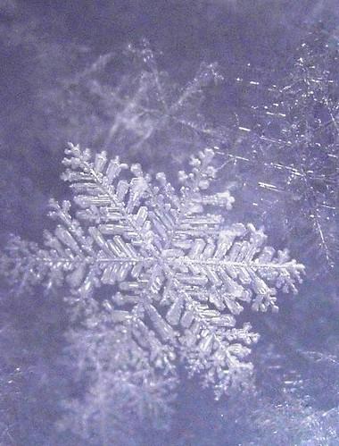Sugar Plum Snowflake