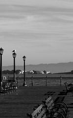 Pier Benches (reflections1000) Tags: sanfrancisco california travel blackandwhite bw blackandwhiteandalittlesepiatoo
