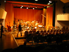 Brandenburg Symphonic Orchestra