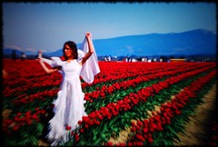 I dreamt of the Lady of the Tulips (LaserGuided) Tags: flowers girls red people film field topv111 510fav wow washington holga interestingness lomo topv333 tulips northwest gimp diana faux blogged skagit fauxlomo rebel2k fauxholga printscan fauxvintage topphotoblog interestingness129 i500 archive002