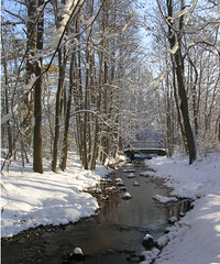 Middletown - Herb Rd (Valerie Craig (Val Ann)) Tags: 2005 water creek bay newjersey december nj p raritan valann tributary waackaack bayshorewatershed creekset waackaackset mtset fbaug08 valann422