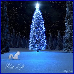 SILENT NIGHT (Terry_Lea) Tags: christmascards tbas