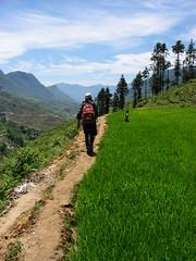 Trek (Sun Spiral) Tags: trip travel vietnam archives sapa