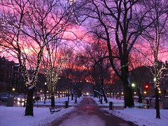 Boston Sunset (bettlebrox) Tags: christmas street city pink trees winter sunset sky snow boston pine 1025fav mall lights evening globe inn cityscape snowy path massachusetts ave 24 mick avenue footpath commonwealth beantown themall commonwealthave commave boston2005 bostonglobe comm pinestreetinn 5000views wbur kaleidoscopicvision citysunset 4000views 6000views 7000views 8000views 12000views 9000views 16000views commonwealthmall wonderfulworldmix mickt bostoglobe mallmixstaraward