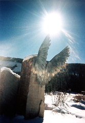 icarus (Kelly Angard) Tags: canon wings lomo lomography colorado denver kreativekell angelswings kellya 50v5f kellyangard 5075views thecraftygirl efs1755mm kellyafineartphotography digitalrebelxtefs1755mm