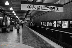 south station-29 (alanschererphotographer) Tags: boston redline train southstation excalator stairs travel transportation alanschererphotographer subway bostonphotographer blackandwhite people reallife truestory