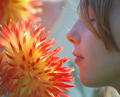 Flower meet and greet (e) Tags: dahlia flower nature girl sarah kissing child mechelen vrijbroekpark expl ysplix thebestyellow