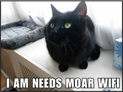 I AM NEEDS MOAR WIFI