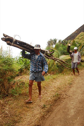 Batanes firewood gathering gatherer rural scene Pinoy Filipino Pilipino Buhay  people pictures photos life Philippinen  菲律宾  菲律賓  필리핀(공화국) Philippines