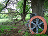Retired (TheSki) Tags: old tree art nature beautiful digital america austin photography texas fuji farm postcard country engine machine divine photograph forgotten stunning s7000 americana vs popular technique retirement artisitic bestshot retire flickrhits fujis7000 theski davidgaiewski