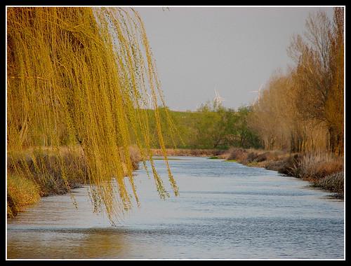 Canal de Castilla, una foto de Almudena Ballesteros