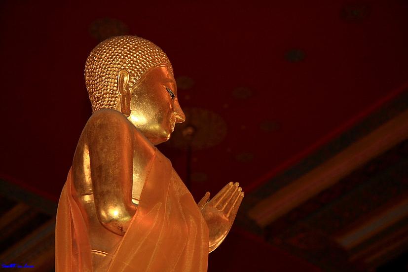 Pray for peace on this Songkran @ Wat Hua Lampong Bangkok