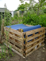 The finished compost bin (London Permaculture) Tags: wood london carpet diy selfbuild bin alexandrapalace waste compost pallet allotment doityourself permaculture reuse northlondon plot21 naturewise wholework