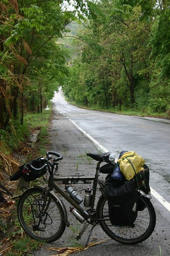 Sweet forest cycling near Si Satchanalai...