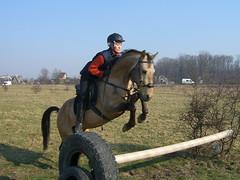 Конь старается прыгнуть с мешком на спине