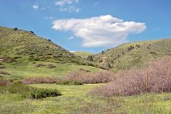 green mtn (Evrmoor-Street Photographer, Surrealist) Tags: mountains colorado highaltitude miningtowns
