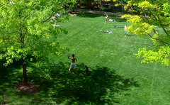 Bascom Mall (Ann Althouse) Tags: football madison bascommall