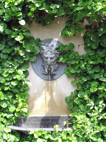 Ivy Encroaching Fountain - Spring