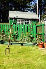For International TBA (Szmytke) Tags: plant green window grass rose garden scotland shed fork pot international tub tba