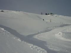 Snowy Snow Snow (weesmalldoll) Tags: banff lakelouise sunshinevillage