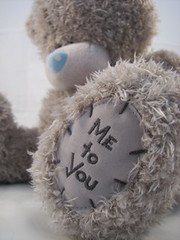 Teddy (alexandralindholm1984) Tags: bear hug friend teddy teddybear bluenose metoyou
