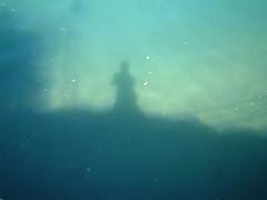lago ombra