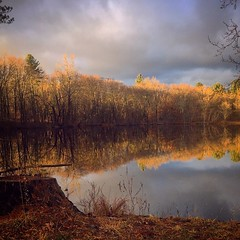 """Gold, Stays."" [IG Remix.] (North Salem, New York, USA; 12/7/16.) (A Million Shards of Light) Tags: nature blue gold weather clouds sun december westchester newyork lake winter color cloud sky water reflection trees landscape usa united states east coast peace love explore free magic moment light"