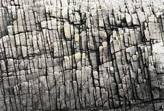 Histoy (BazzaStraße) Tags: canona1 kodakektar100 coast coastal rocks strata layers cracks lichens