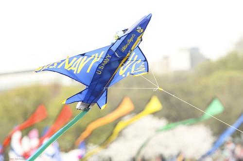 KiteFestival-2311.jpg