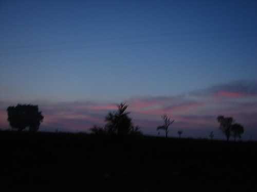 Dawn at bandipur