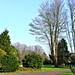 Fitzgerald Park_3