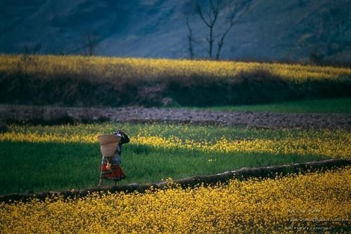 0702_nepal_515