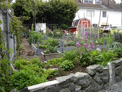 g30f_communitygarden