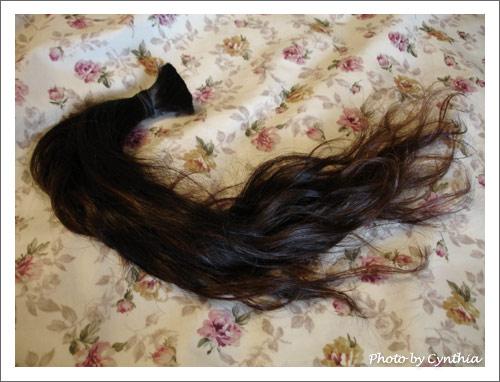 五年一度剪頭毛