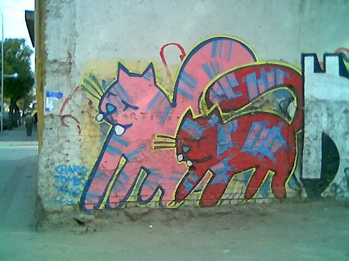 Graffiti de gatos