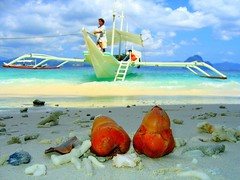 (chona_p) Tags: beach boat sand philippines elnido palawan coconutflower abigfave superaplus aplusphoto superbmasterpiece diamondclassphotographer flickrdiamond