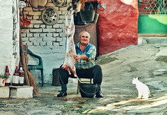 Waiting for his part (AIeksandra) Tags: photojournalism balkans people portrait male emotions coulors colors documentary cat ritual ceremony red