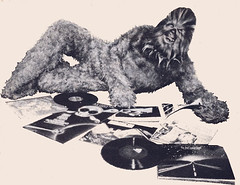 Chewie Likes Albums (Neato Coolville) Tags: starwars 1977 soundtrack chewbacca recordalbum