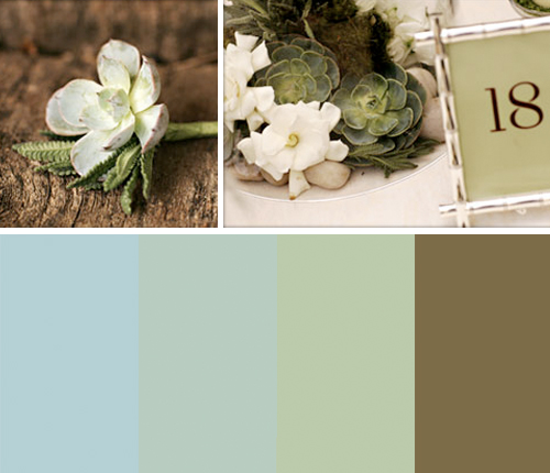 succulent desert color scheme This new color scheme of pale blue