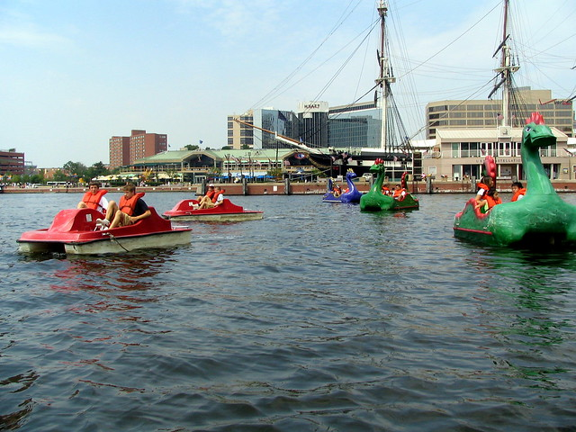 Paddle-boating the Inner Harbor