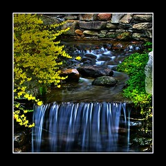 Backyard zen II (Java Cafe) Tags: longexposure topf25 water garden landscape interestingness bravo rocks stream zen slowshutter arkansas flowing waterblur f25 hotsprings flowingwater interestingness207 i500 goldenphotographer explore23may07