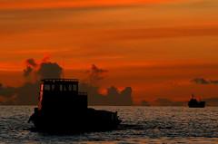 Silhouette Of a Dhoni (maapu) Tags: sunset sea fab sky silhouette boat maldives labyrinth dhoni interestingness136 i500 abigfave anawesomeshot impressedbeauty maapu mauroof flickrdiamond diamondclassphotographe may232007